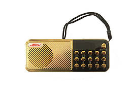 Радіо, портативна колонка PERYOM M-11