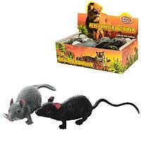Животные 7218 мышка,9см, антистресс, 24шт(2 вида)