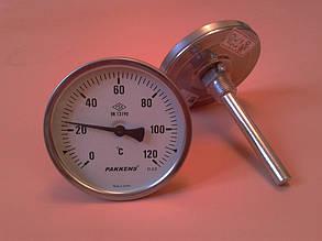 "Термометр биметаллический PAKKENS Ø100мм от 0 до 120 градусов, трубка-капилляр 10 см с резьбой 1/2""     Турция"