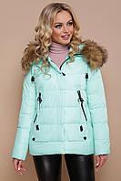 Стильная короткая женская зимняя курточка с капюшоном и мехом Куртка 18-168 мята
