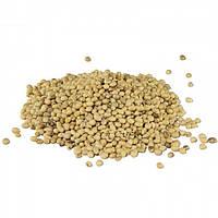 Соя, бобы органической сои для проращивания 500 грамм