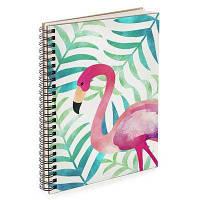 Блокнот Sketchbook Фламинго, фото 1