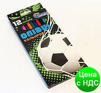 """Карандаши пластик. 12 цв  № 1051L-12 """"Гол!"""" в картоне, европодвес"""