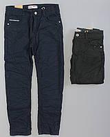 {есть:134}  Бесплатная доставка Котоновые брюки на флисе для мальчиков Glass Bear , 134-164 рр.