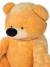 Большая мягкая игрушка Медведь Бублик 180 см медовый, фото 3