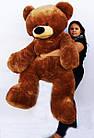 Большй  медведь  Бублик 200 см коричневый, фото 3