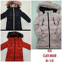Куртки зимние на девочку оптом, Setty Koop, 6-16 рр