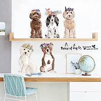 """Наклейка на стену в детскую, виниловые наклейки детский сад в магазин """"Fancy of Dog"""" высота 44см (лист60*90см"""