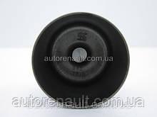 Толкатель клапана на Рено Трафик 01-> 1.9dCi (7.700mm) KOLBENSCHMIDT (Германия) - 50007543