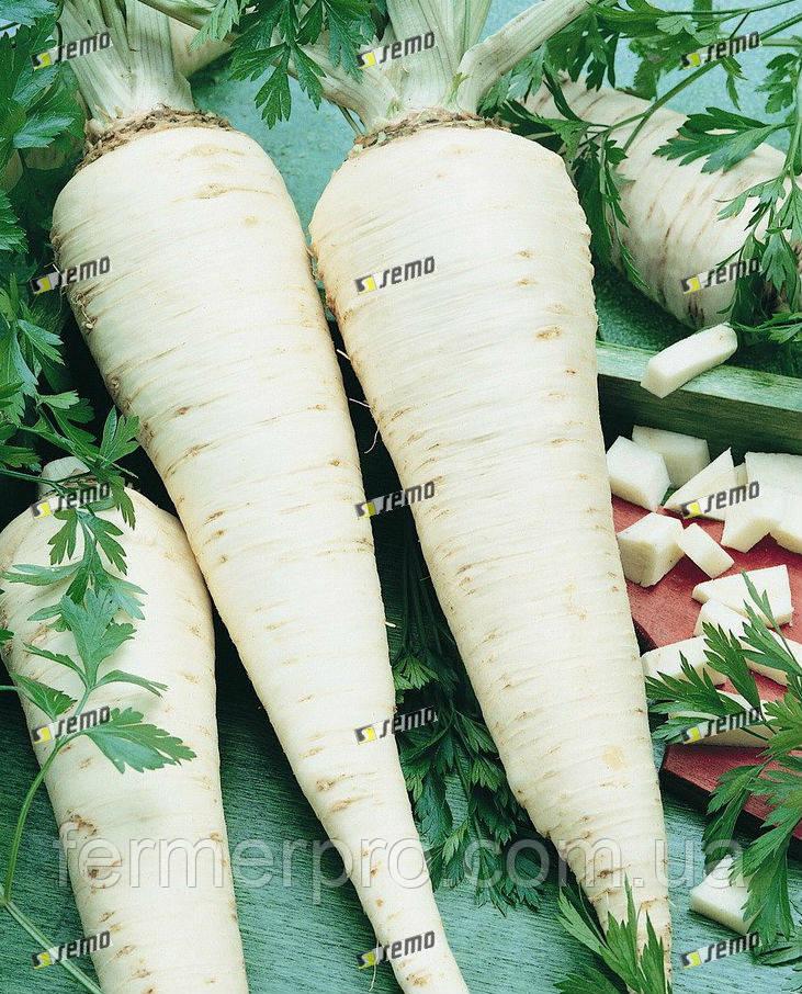 Петрушка корневая Ядран 0,5 кг, Semo