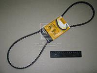 Ремень клиновой, ContiTech 10X1250