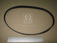 Ремень поликлин. 5PK900, DONGIL 5PK900
