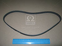 Ремень поликлин. 4PK880, DONGIL 4PK880