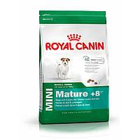 Корм для пожилых мини-собак Royal Canin Mini Mature 8+