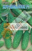 Семена Огурец (Журавленок, Закуска, Засолочный, Засухоустойчивый, Ира миникорнишон), фото 1