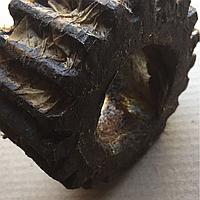 Сателлит бортовой передачи МАЗ (Z=19 зуб.) 500-2405035