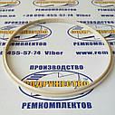Виріб з поліаміду 13.8603.404 (80 х 75-4) (чистильник), фото 3