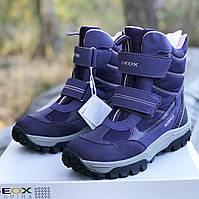 c49f102d Зимние водонепроницаемые ботинки Geox (Италия) р 37. зимняя обувь джеокс