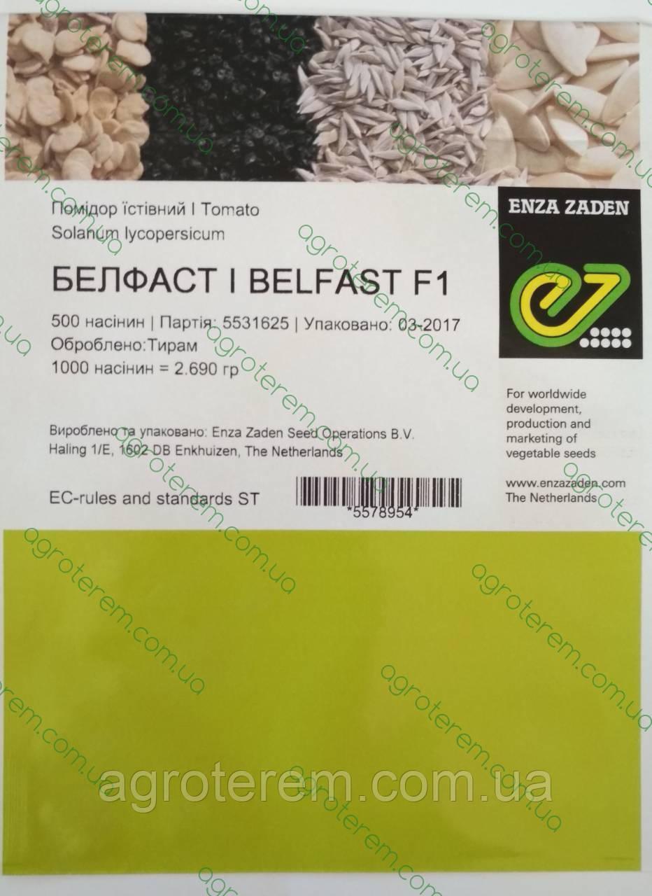 Семена томата Белфаст F1 (Belfast F1)  500с