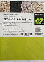 Семена томата Белфаст F1 (Belfast F1)  500с, фото 1