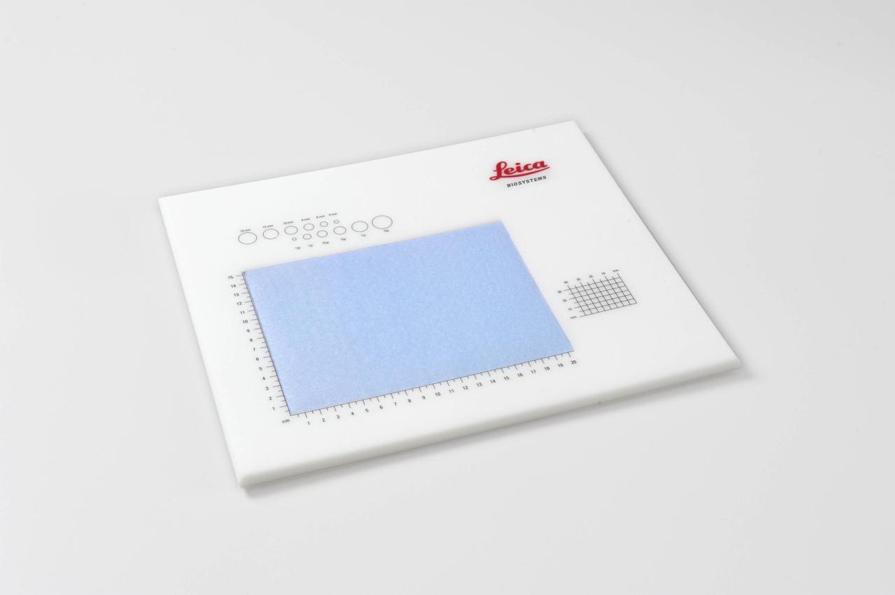 Столик для формировки образцов со шкалой Plain Dissection Board