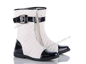 Сапоги Весна-Осень Купить обувь оптом. Детская обувь. Женская обувь ... b8a52d9d4ec3a