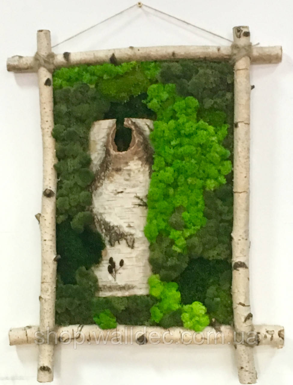Картина з скандинавського моху (ягель)
