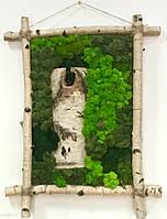 Картина из скандинавского мха (ягель)