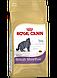 "Акция ""Вместе дешевле"" Royal Canin British Shorthair Adult 10 кг + ANIMALL ""Зеленый изумруд"" 10,5л, фото 2"