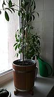 Кадка для цветов дубовая 12 л. с вставкой