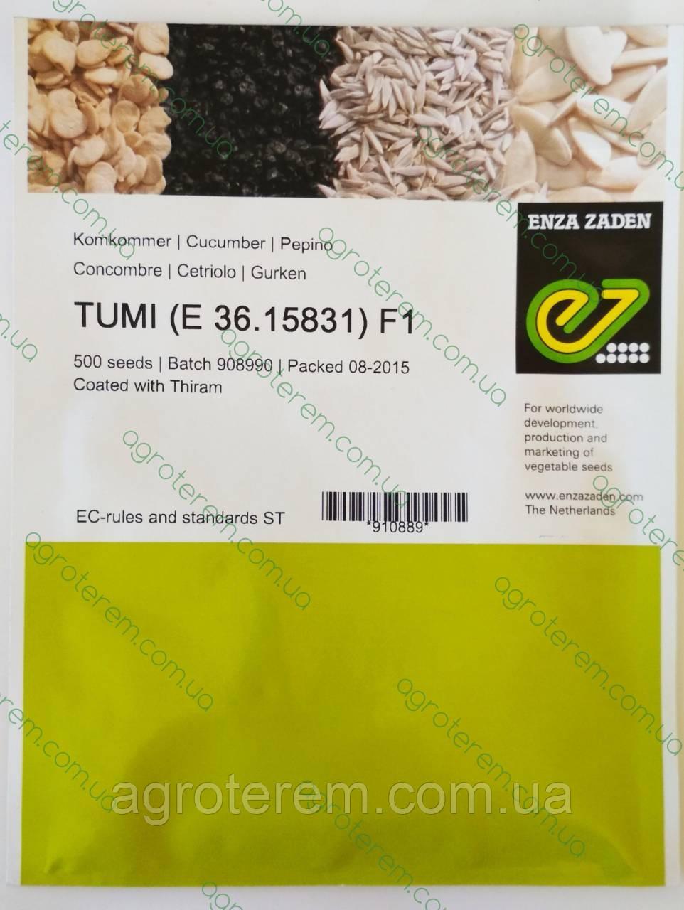 Семена огурца  Туми TUMI F1 500с