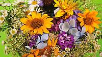 Весенние цветы отдушка-10 мл
