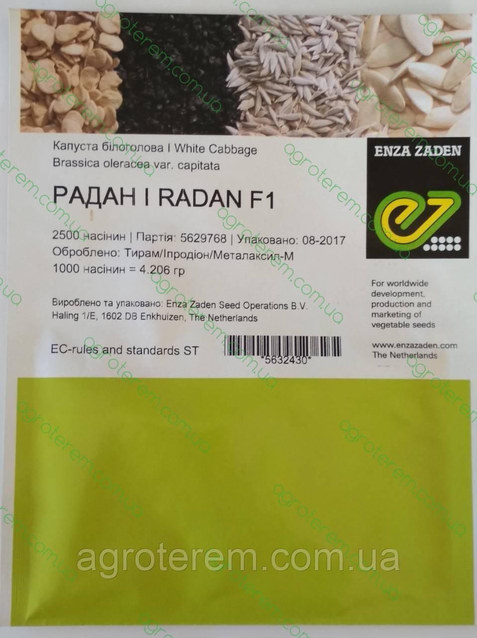Семена капусты белокачанной ранней Радан F1 (Radan F1) 2500с.