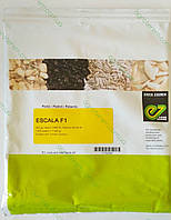 Семена редиса Эскала ESCALA F1 250 г, фото 1