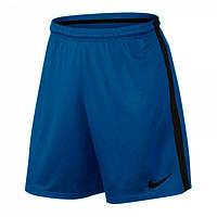 Шорты Nike Squad Football Short 435 (807670-435)
