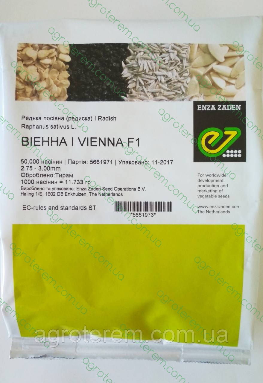 Редис Виенна Vienna F1 50000с (2,75-3)