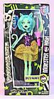 Кукла Monster High Монстер Хай серия Weird Girl Шарнирная с сюрпризом (аксессуары +) набор 4 шт. TOY011, фото 6