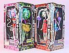Кукла Monster High Монстер Хай серия Weird Girl Шарнирная с сюрпризом (аксессуары +) набор 4 шт. TOY011, фото 2