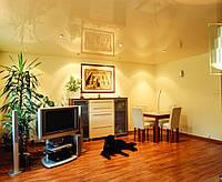 Глянцевый потолок гостинная