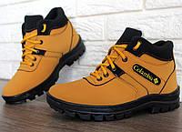 Зимові черевики чоловічі яскраві і сучасні (рлб-4кр)