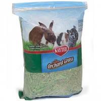 Kaytee Orchard Grass КЕЙТИ ОРЧАРД ТРАВА садовое сено корм для грызунов, 454гр