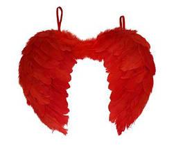Маленькие красные крылья на карнавал, маскарад  40*30 перьевые крылышки