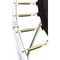 Батут із зовнішньою мережею Zipro Fitness 252 см, фото 3