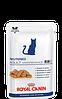 Royal Canin neutered adult maintenance  для кастрированных \ cтерилизованных котов и кошек  - 100 г