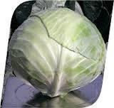 Семена капусты б/к Аммон F1 20 семян Seminis Хранения до 10 месяцев