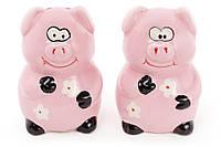 Набор для специй керамический Веселая Свинка: солонка и перечница, 7см BonaDi 971-714