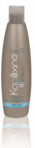 Шампунь для жирных волос с экстрактом крапивы Nouvelle Normalizing Cleanser 250 мл, фото 2