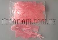Перья коралловые 11-15 см 50 шт
