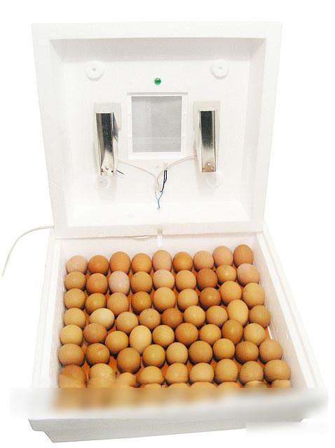 Рябушка-2 инкубатор купить херсон