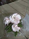 Гілочка еустоми тонована рожева, фото 2